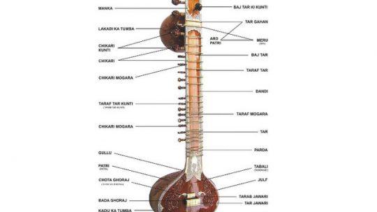 Chitarre indiane: tipologie e caratteristiche degli stumenti a corde indiani